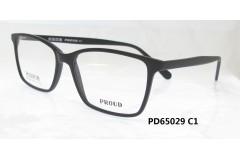 P65029 C1